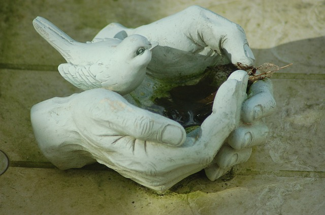 ruce s ptáčkem