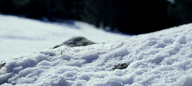 bílá příroda